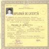 diploma_licenta